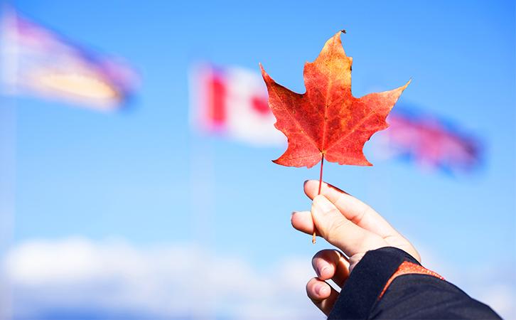 这些加拿大教育局开放2021年申请啦!